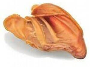 Recalled Pig Ear Pet Treat