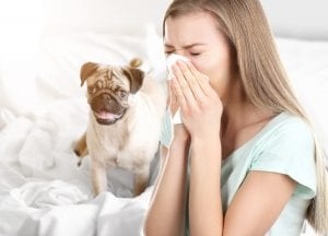 Woman sneezing with dog in the background