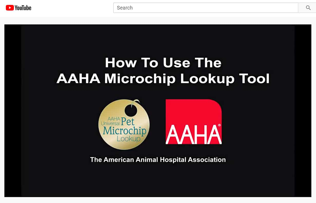Screenshot of AAHA Microchip Lookup Tool YouTube channel video