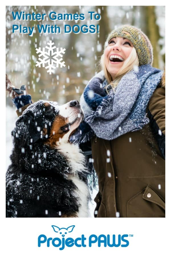 Pitnerest Image for Winter Games To Play With Dogs