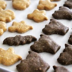 Peanut Butter and Pumpkin Dog Treat Recipe - HALLOWEEN MIX