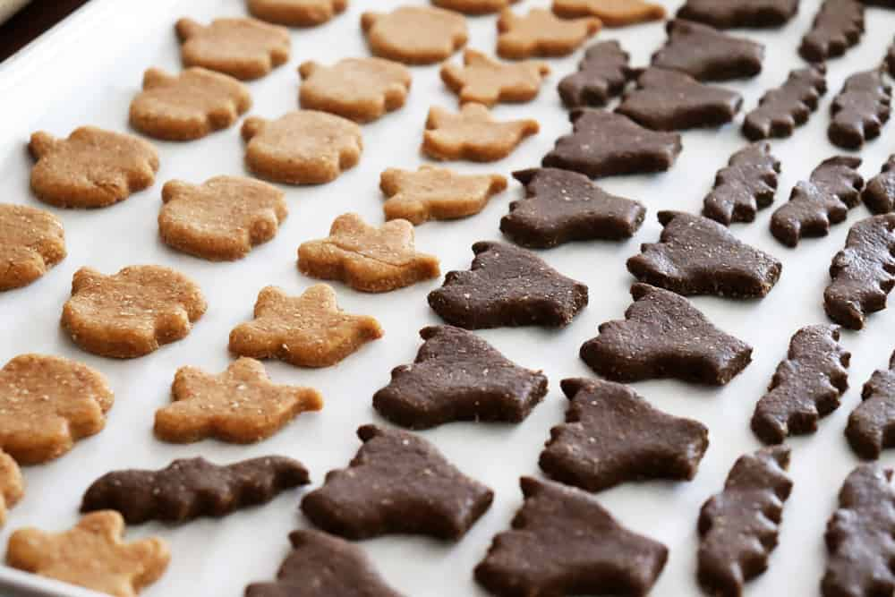 Arranged dough cookie cutouts on parchment paper ready to bake
