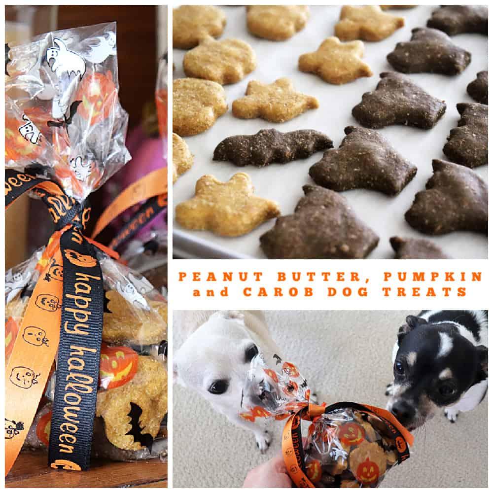 PINTEREST Image for Peanut Butter and Pumpkin Dog Treats