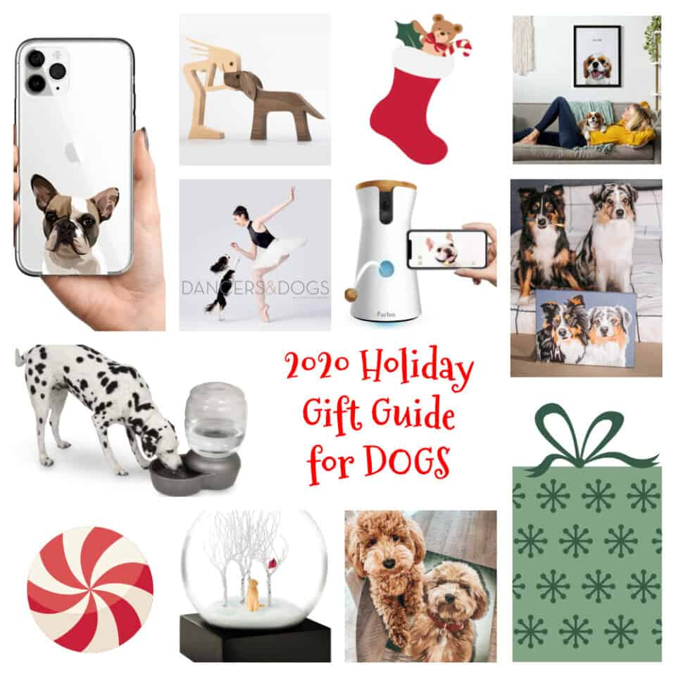 The Ultimate 2020 Holiday Gift Guide for Dogs and Dog Lovers HERO Image