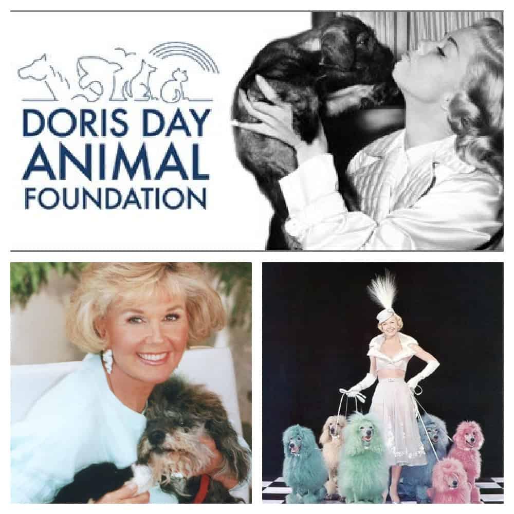 Doris Day Collage