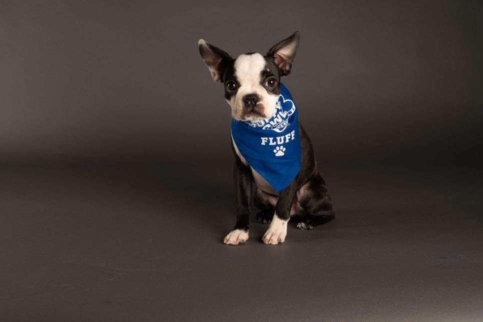 """Photo Credit: """"Marshall"""" ANIMAL PLANT 