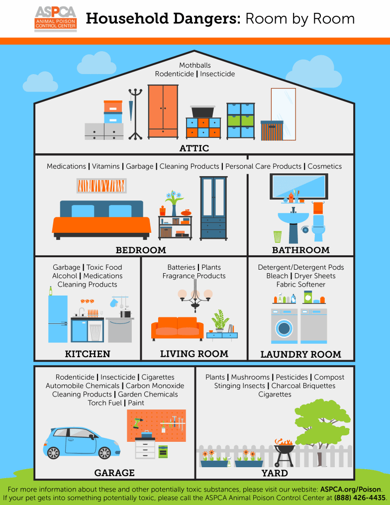 ASPCA's Animal Poison Control Center (APCC) Household Dangers: Room by Room Shareable Infographic